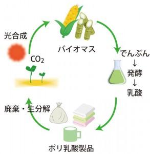 コラム4_Bioplastic_ひらさか編