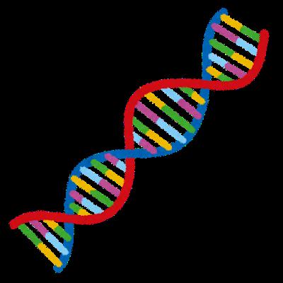 解説】2018年ノーベル化学賞を理解するために~タンパク質について知る ...